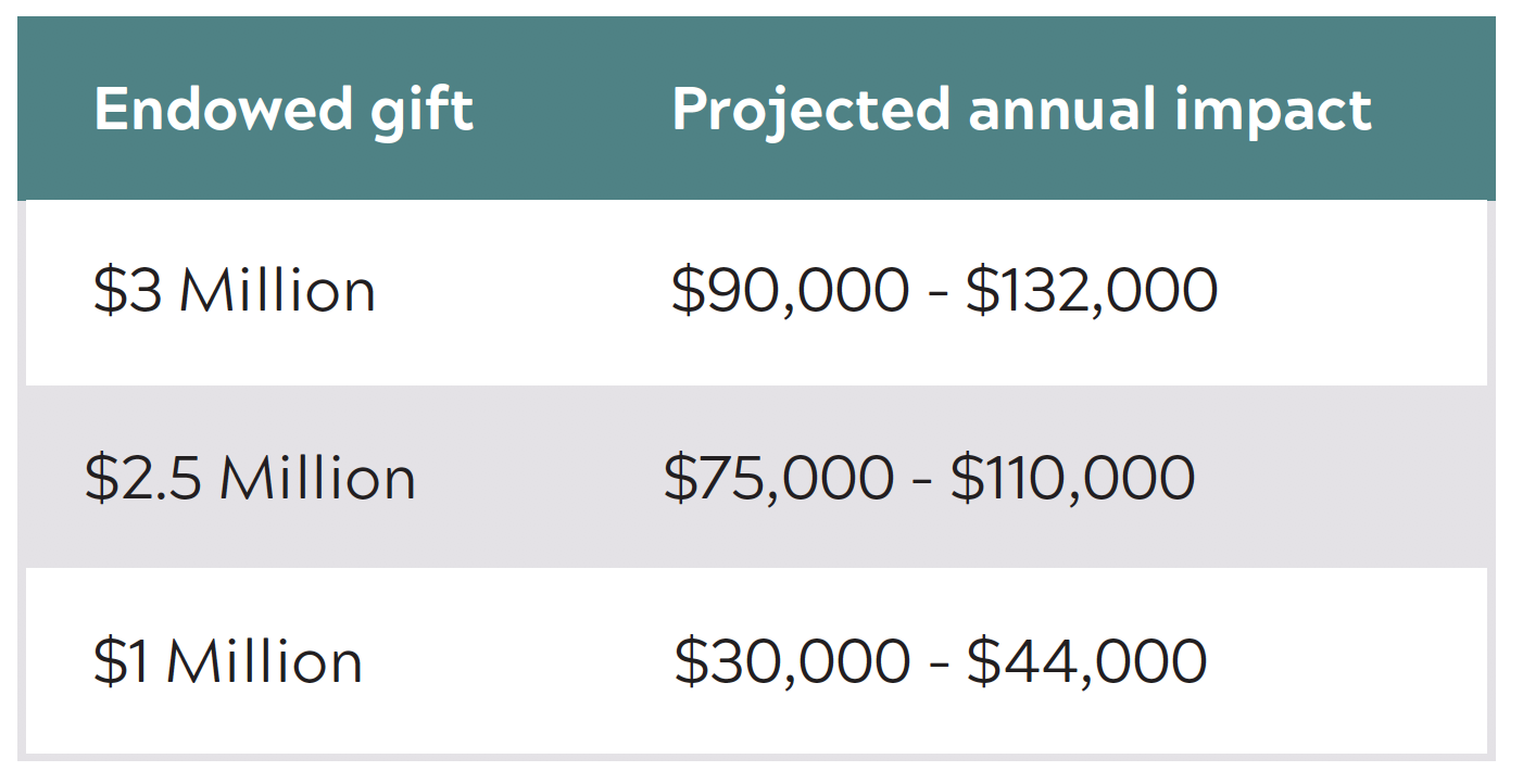 Endowed professorship projected annual impact chart